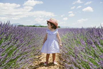 France, Provence, Valensole plateau, toddler girl standing in purple lavender fields in the summer Fotoväggar