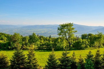 Spring mountain landscape. A beautiful view of the green hills.