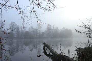 mystischer Nebel am Fluss, Konzept Trauer, Bestattung, Abschied, Tod