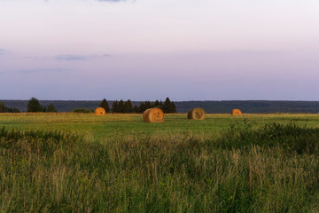 large round bales of hay lays on a beveled meadow