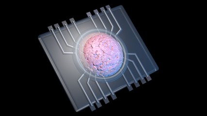 Physiomimetic technology. Organs on a chip. 3d rendering