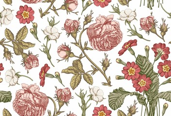 Seamless pattern Beautiful pink blooming realistic isolated flowers Vintage background Rose primrose wildflowers Wallpaper Drawing engraving Vector victorian Illustration