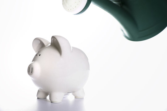 Watering Piggy Bank