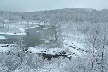 Neutral gray winter landscape