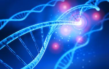 DNA-Strang - Molekül