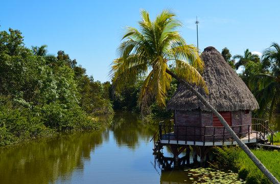 Cienaga de Zapata, Cuba