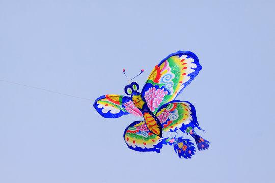 beautiful butterfly modelling kite