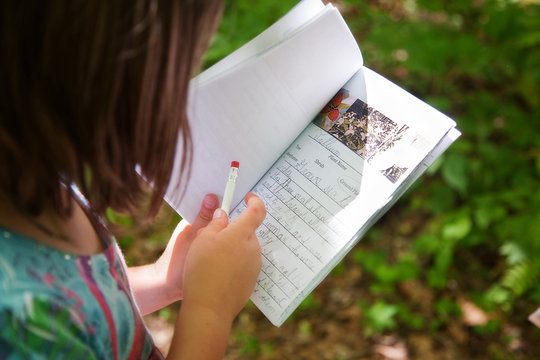 Child Looking at field guide booklet