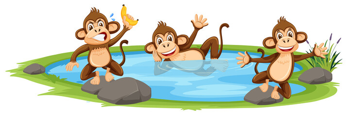 Monkey playing in the water