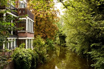 House by the River in a Dense Forest