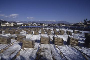 日本の伝統食品の寒天の製造風景、乾燥風景