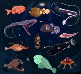 Angler fish vector angry seafish predator character with teeth and light or cartoon sea-angler undersea in tropical wildlife illustration set of exotic deep fish in ocean isolated on background