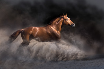 Wall Mural - Red stallion run free in dark desert storm