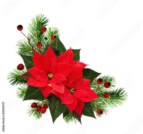 Christmas Corner Arrangement With Pine Twigs Red Berries And Poinsettia Flowers