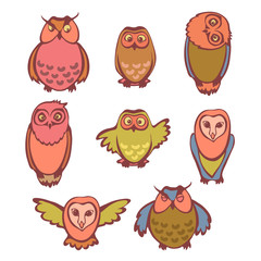 Set of funny owls.
