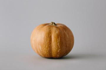 vivid ripe pumpkin