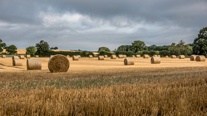 A landscape of a rural summer scene of farm land. The image shows large round bales of straw in a field. The sky is cloudy and dark with sunshine.
