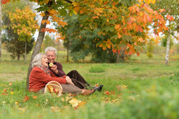 happy Senior couple sitting in autumn park