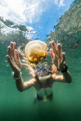 Martigias woman snorkeling with Papua Jellyfish, Jellyfish lake, Misool, Indonesia