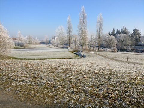 Park im Frost