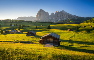 Seiser Alm (Alpe di Siusi) with Langkofel mountain at sunrise in summer, Italy