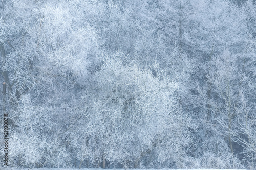 winter scene with atmospheric icing