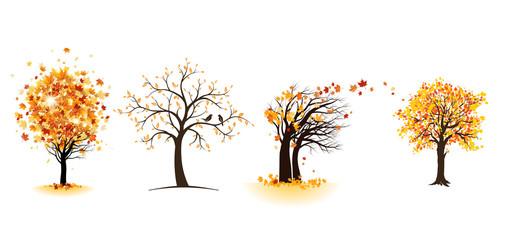 Wall Mural - Fall maple trees set