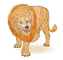 Fantasy illustration of roaring lion on white background. Hand-drawn vector image.