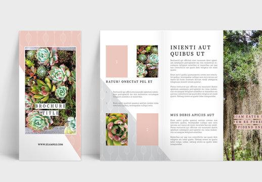 Delightful Trifold Brochure Layout