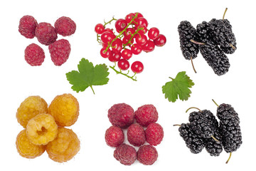 Raspberries,currants and mulberries isolated on white