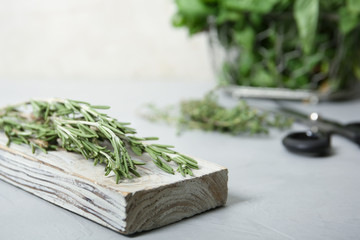 Wooden board with fresh green rosemary on table. Aromatic herbs