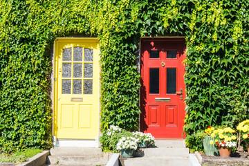 Bunte Türen in Efeuwand