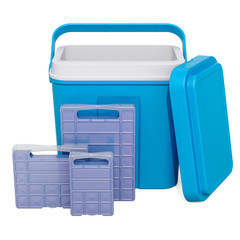 Portable Cool Box with Freezer Blocks, 3D rendering