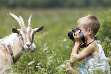 Profile portrait of young blond cute handsome child boy taking picture of funny curious goat looking straight in camera on bright sunny summer day on blurred light green grassy copyspace background.