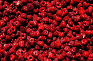 Rasberry. Fruits. Background.