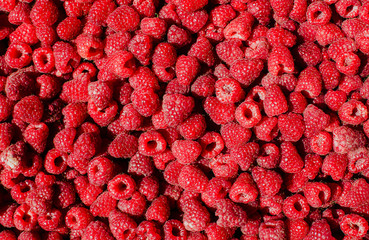 Rasberries. Rasberry. Fruits.