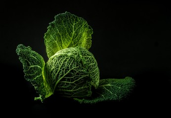 Cabbage, vegetables, green food with a dark background, veggies