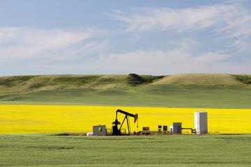 Oil Petroleum Pumpjack Alberta
