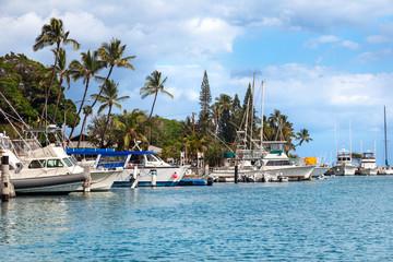 Motorboats and sailboats docked in the harbor at Lahaina, Maui, Hawaii