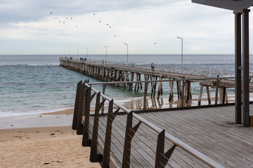 The Port Noarlunga  viewing platflorm with the jetty in the background and flock of birds in South Australia on the 23rd August 2018