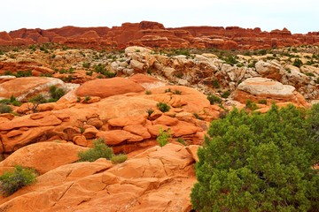 Autocollant pour porte Orange eclat Beautiful landscape in natural colors at Arches National Park in Utah, USA