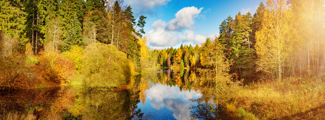 trees with multicolored leaves on shore at lake in autumn. Little pond with beautiful reflection