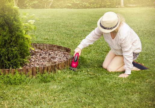 Woman is trimming the edges of flower bed with small electric pruning shears hand tool, too long grass weed.