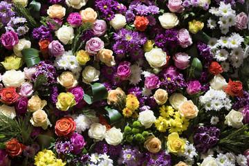 Blumen, Hintergrund, Wand