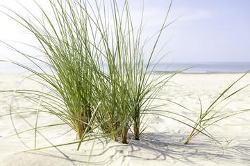 Morze Bałtyckie, widok z zachmurzonym niebieskim niebem