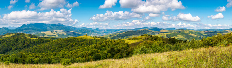 panorama of a beautiful landscape. grassy meadows and forested hills in early autumn. mountain ridge in the distance beneath a blue sky with clouds