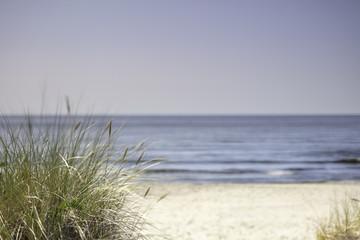Obraz Morze Bałtyckie, widok z niebieskim bezchmurnym niebem - fototapety do salonu
