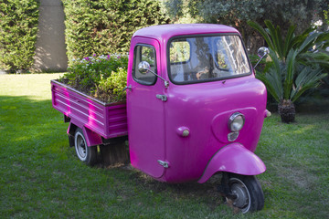 Pink three-wheeled vehicle in vintage garden