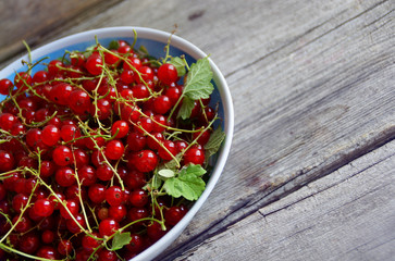red currant on a wooden table