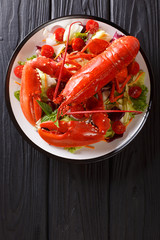 Whole cooked lobster served with vegetable salad close-up. Vertical top view